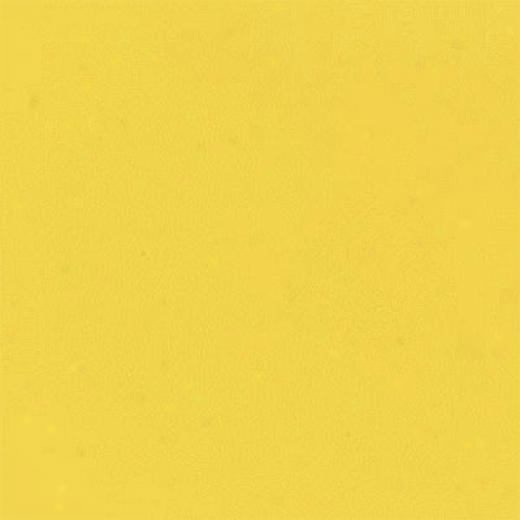 Daltile Design China Polished 12 X 12 Giallo Modena Tile & Stone