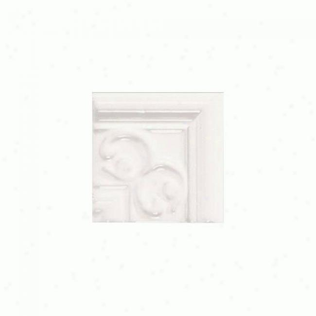 Daltile Fashion Language Provincial Fa50 100 Nexus Corner Tile & Stone