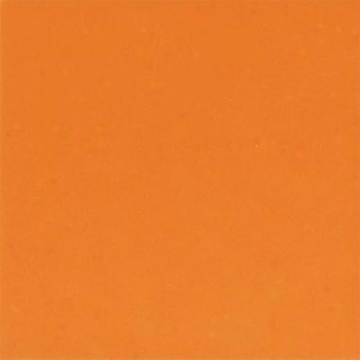Daltile Festia 6 X 6 Marmalade Tile & Stone