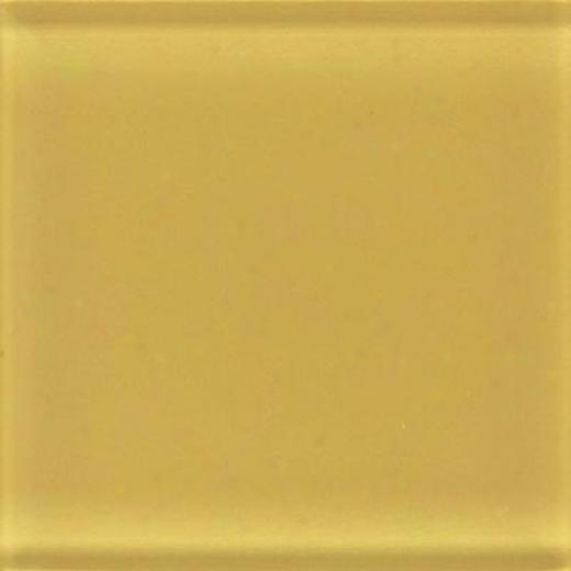 Daltile Glass Reflections 3 X 6 Honey eBe Tile & Stone