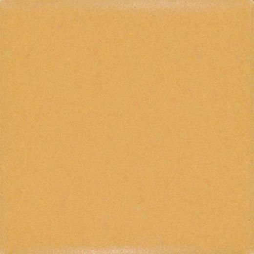 Daltile Keystonee Permatones 2 X 2 Mustard Tile & Stone