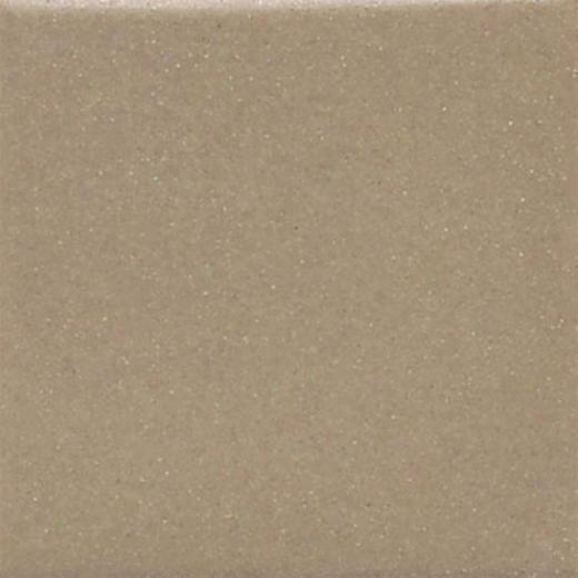 Daltile Keystones Permatones 2 X 2 Elemental Tan Tile & Stone