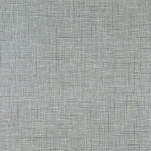 Daltile Kimona Silk 2 X 24 Morning Dove Tile & Stone
