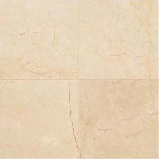 Daltile Marble 2 4X 24 Polished Crema Marfil Classic Tile & Stone