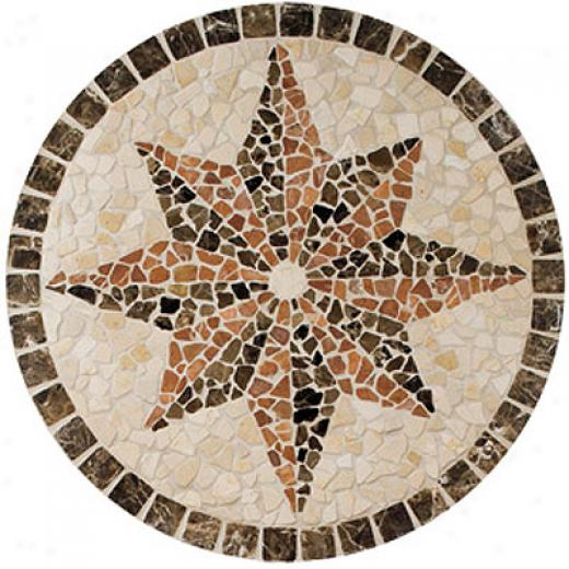 Daltile Medallions Tumbled Stne Northern Star Tile & Stone