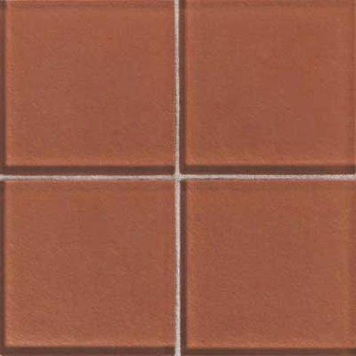Daltile Molgn Glass 2 X 2 Papaya Tile & Stone
