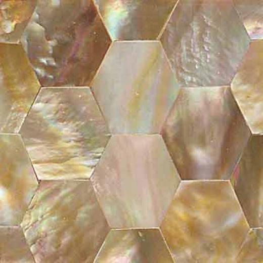 Daltile Ocean Jewels Honeycomb Brown Lip Tile & Stone