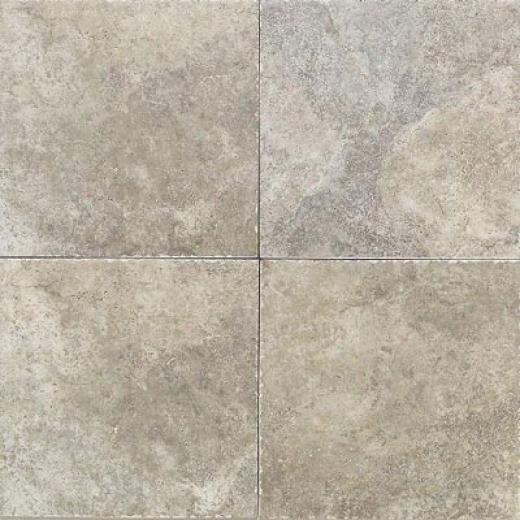 Daltile Paraiso 10 X 10 Artico Tile & Stone