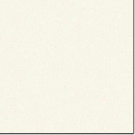 Daltile Rittenhouse Harlequin 3 X 6 Arctic Whjte Matte Tile & Stone