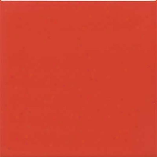 Daltile Semi-gloss 6 X 6 Coral Bead Tile & Stone