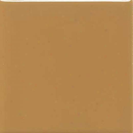 Daltile Semi-gloss 6 X 6 Gold Coast Tile & Stone