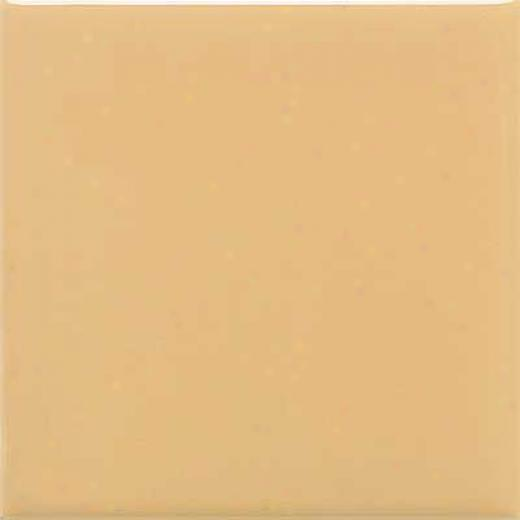 Daltile Semi-gloss 6 X 6 Luminary Gold Tile & Stone