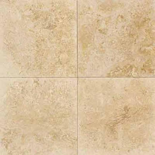 Daltile Traevrtine Natural Stone Honed 18 X 18 Turco Classico Tile & Stone