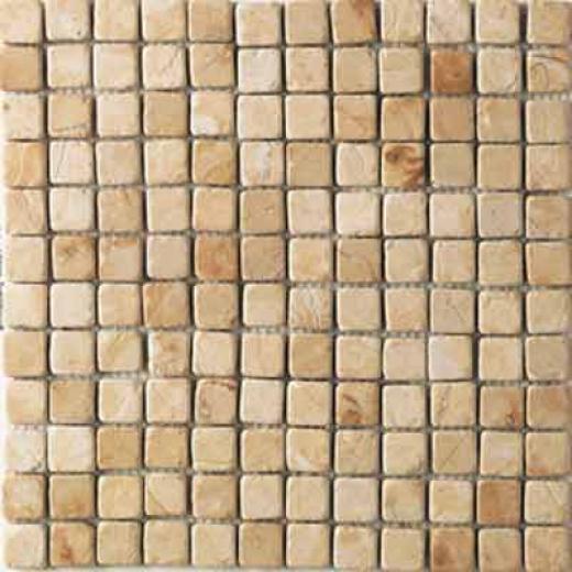 Daltile Tumbled Natural Stone Mosaics 1 X 1 Champagne Gold Tile & Stne