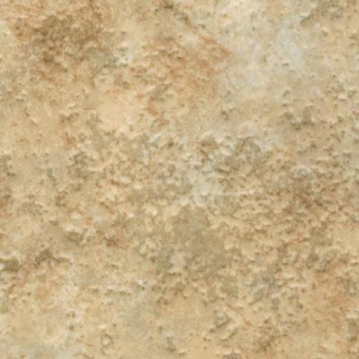 Domco Builders Chpice - Caravelle 12153 Vinyl Flooring