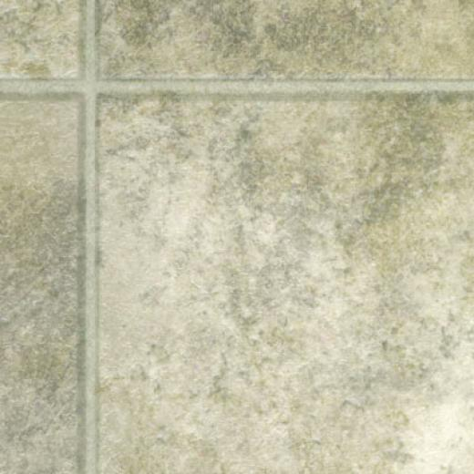 Domco Customflor - Mt. eVrnon 6 65352 Vinyl Flooring