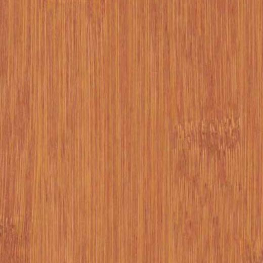 Duro Design Engineered Wide Bamboo Cointreau Bamboo Flooring