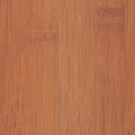 Duro Design Engineered Wide Bamboo Caramel Bamboo Flooring