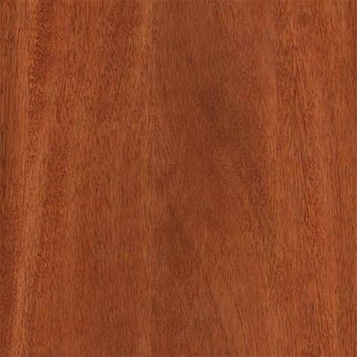 Duro Design European Eucalyptus Coconut Brown Hardwood Flooring