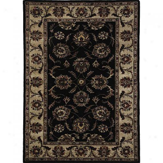 Dynamic Rugs Splendor 5 X 8 Black Ivory Area Rugs