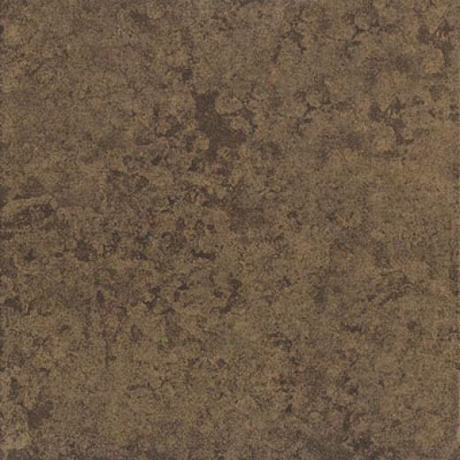 Emser Tile Aurora 20 X 20 Noce Tipe & Stone