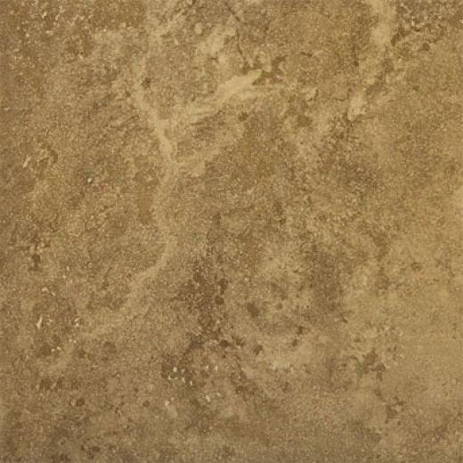 Emser Tile Madrid 20 X 20 Dorado Tile & Stoe