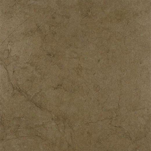 Emser Tile Moda 20 X 20 Tabacco Tile & Stone