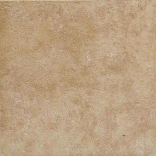 Emser Tile Pacific 6 X 6 Beige Tile & Stone