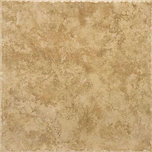 Emser Tile Terrazza 20 X 20 Pomeriggio Tile & Stone