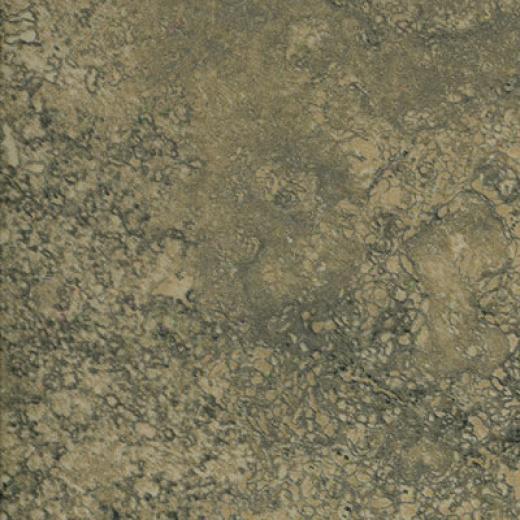 Epc Piamonte 10 X 13 Musgo Tile & Stone