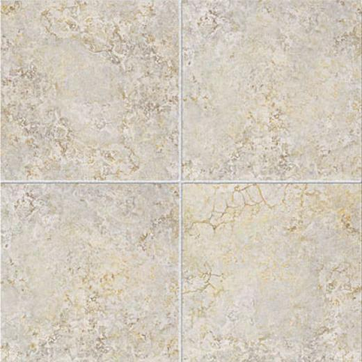 Esquire Tile Spoleto 18 X 18 Grey Tile & Stone