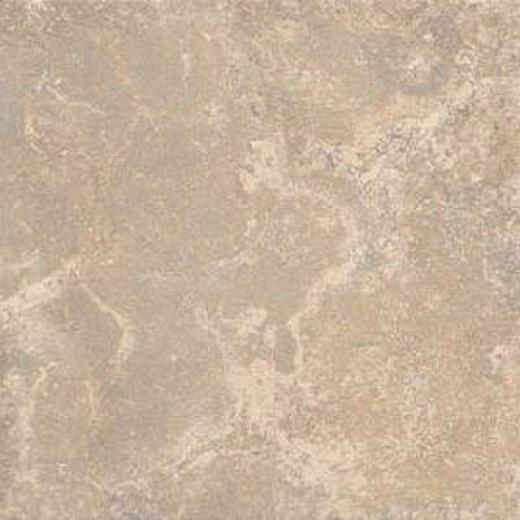 Florida Tile Creekside 8 X 12 Russet Brown Tile & Stone