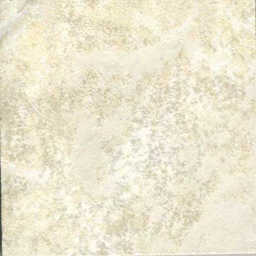 Florida Tile Highlands 12 X 18 Dover Tile & Stone