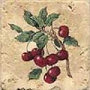 Florida Tile Pietra Art Accents - Inserts Cherry Tile & Stone