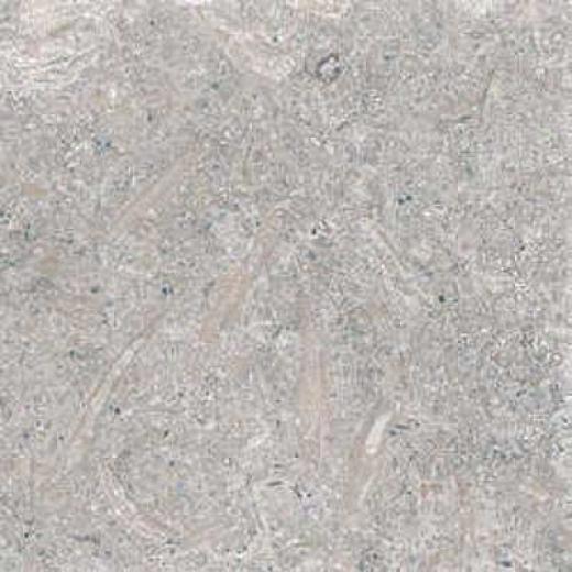 Florida Tile Pietra Art Limestone 24 X 24 Rustic Green Tile & Stone
