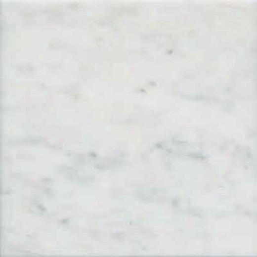 Florida Tile Pietra Art Marble 12 X 12 Calacatta T Tile & Stone