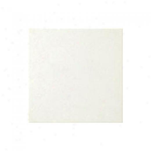 Florida Tile Retro Classic 6 X 6 White Tile & Stone