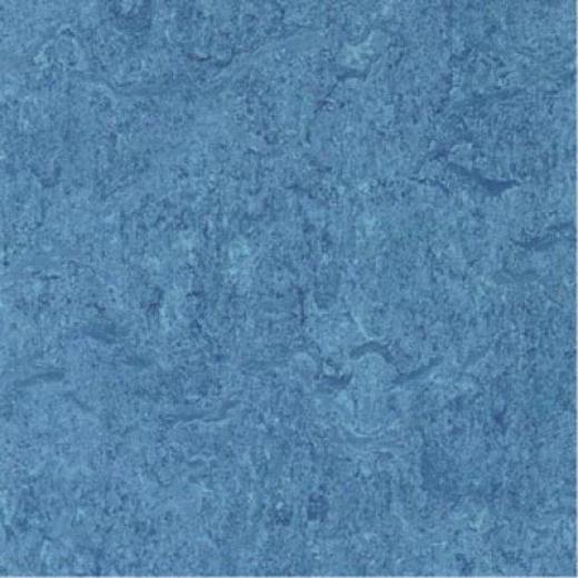 Forbo Marmoleum Click Plank Lava Vinyl Flooring