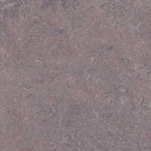 Forbo Marmoleum Click Plank Arabesque Vinyl Flooring