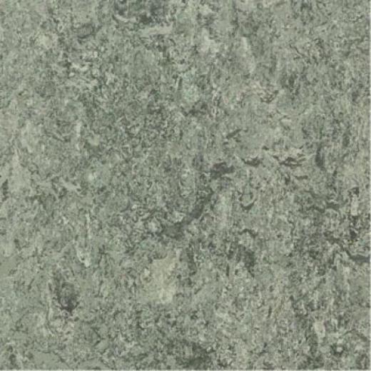 Forbo Marmoleum Click Plank Serene Grey Vinyl Flooring