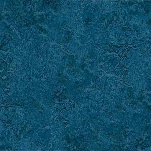Forbo Marmoleum Click Plank Blue Vinyl Floornig