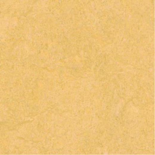 Forbo Marmoleum Click Plank Natural-com Vinyl Flooring