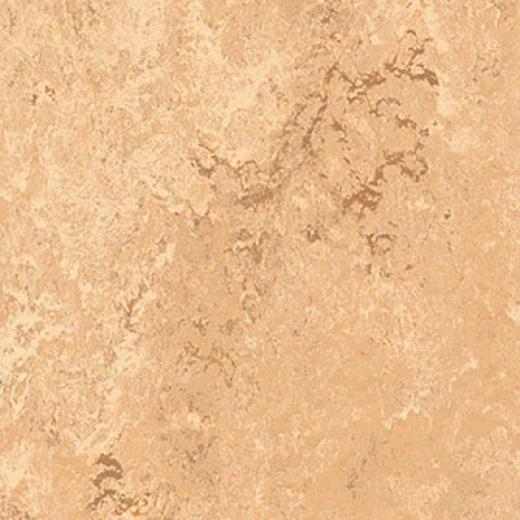Forbo Marmoleum Dual Barley Vinyl Flooring