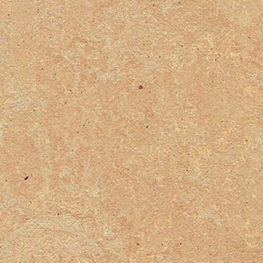 Forbo Marmoelum Fresco Arabian Pearl Vinyl Flooring