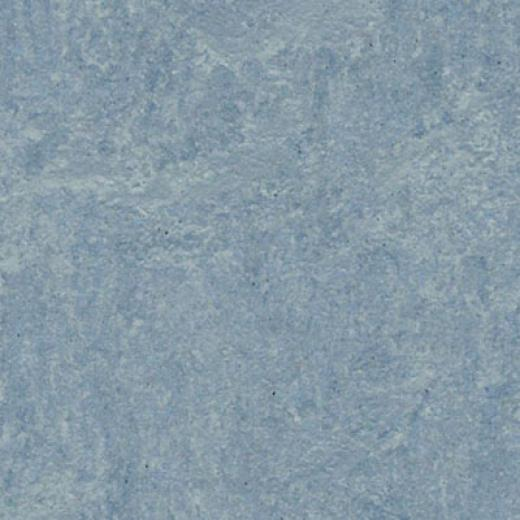 Forbo Matmoleum Fresco Blue Heaven Vinyl Floorign