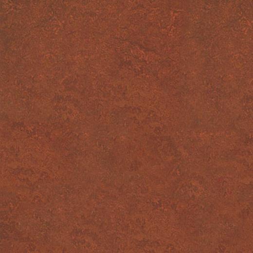 Forbo Marmoleum Real 1/10 Henna Vinyl Flooring