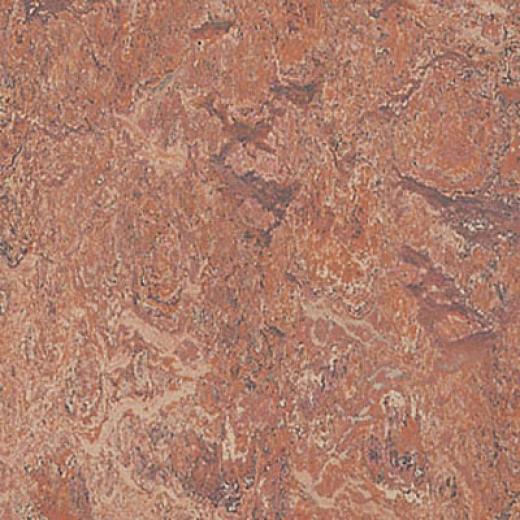 Forbo Marmoleum Real 1/1 Opera Vinyl Flooring