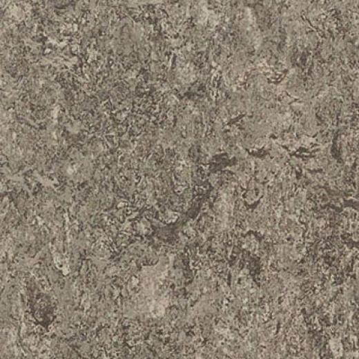 Forbo Marmoleum Real 1/12 Serene Grey Vinyl Flooring