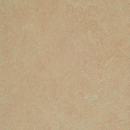Forbo Marmoleum Sheet Neutral Color Silver Birch Vinyl Flooring