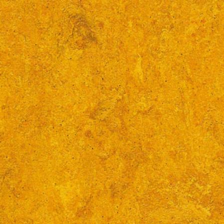 Forbo Marmoleum Sheet Sunset Boulevard Golden Sunset Vinyl Flooring